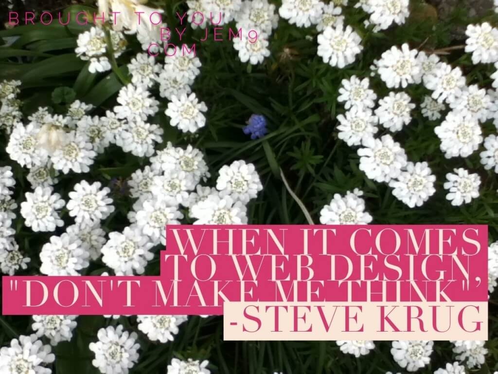 "Marketing Inspiration Brought to You by JEM 9 Digital Marketing: A Quote from Steve Krug which is also the name of his great book ""When it comes to web design don't make me think"""