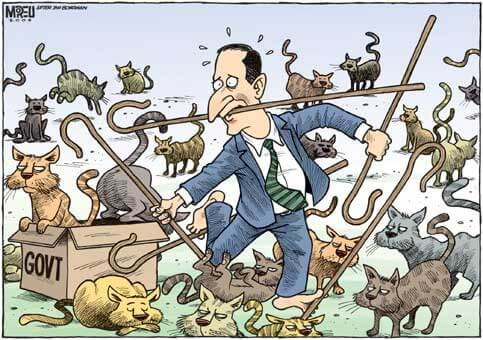 Cartoon of a man in suits with several shepards' crook trying to catch cats. No sign of first followers here :-)