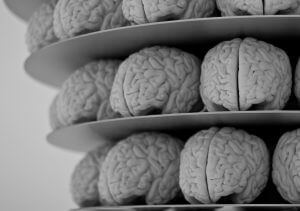 Brains: One of the most valuable sources of data in market research